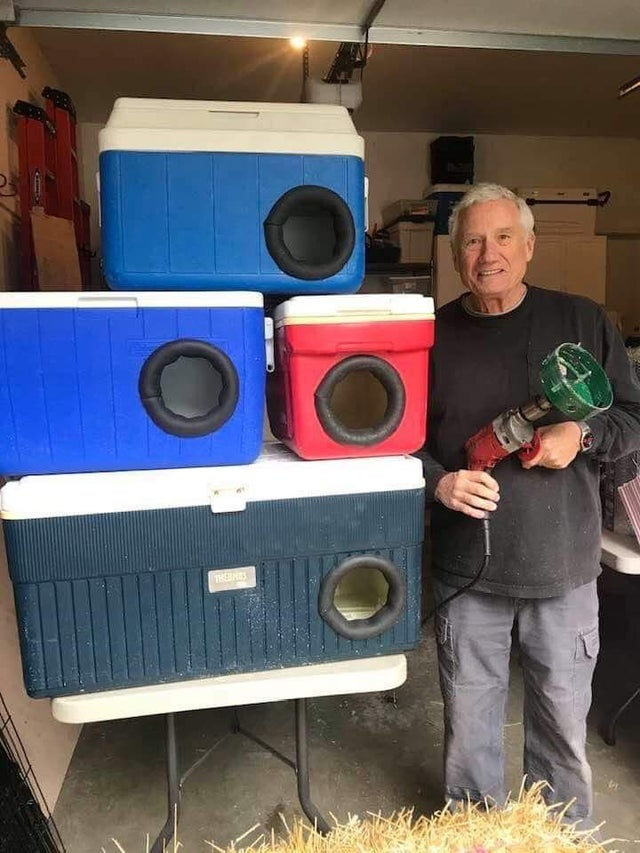 This man is recycling old picnic coolers into shelters for stray cats for winter! How very cool is this?!